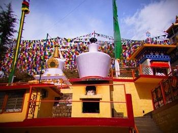 dharamshala (9).JPG